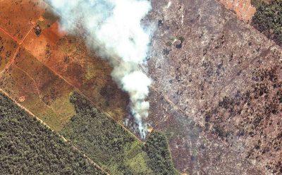 Alarma mundial por los miles de incendios que devastan la Amazonía