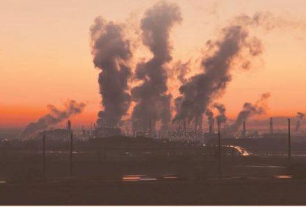 Carbono neutral: los retos para el país