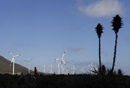 Acera destaca el rol que está tomando la energía eólica en el sistema eléctrico