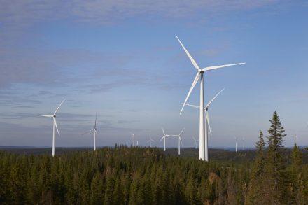 Generación eléctrica: participación de ERNC alcanza 23,5% al primer semestre del año