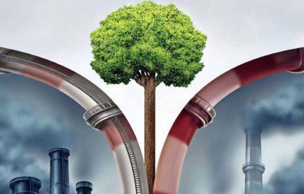 Los retos para Chile en su camino hacia la descarbonización